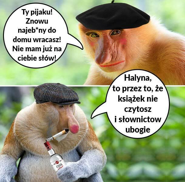 Janusz gasi Grażynę :D
