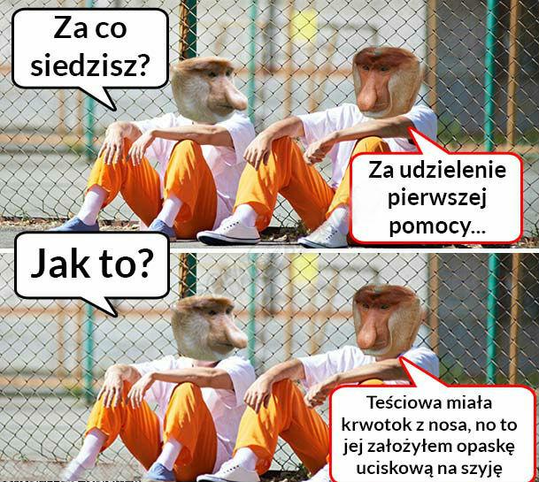 Za co siedzi Janusz?