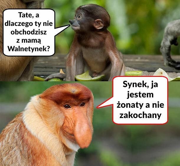 Walentynki u Januszów :D