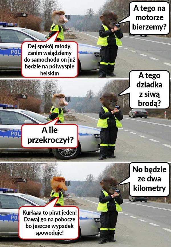 Policjanci w akcji :D