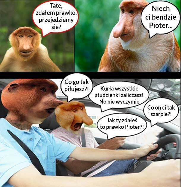 Pioter za kierownicą