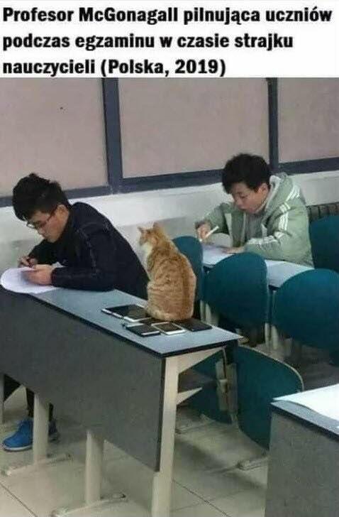 McGonagall na egzaminie