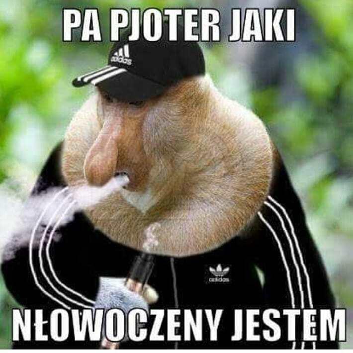 Janusz - człowiek nowoczesny :D