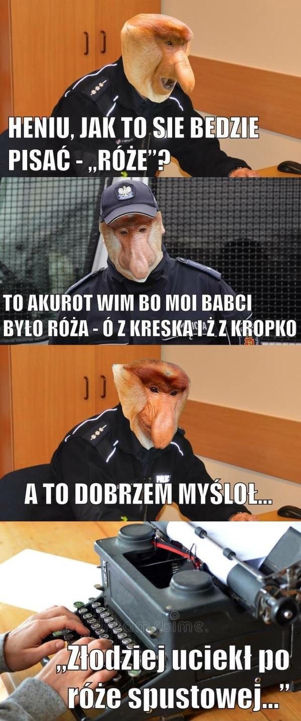 Janusz król ortografii w akcji :D