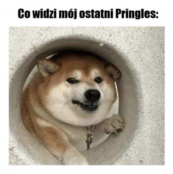 Ostatni Pringles
