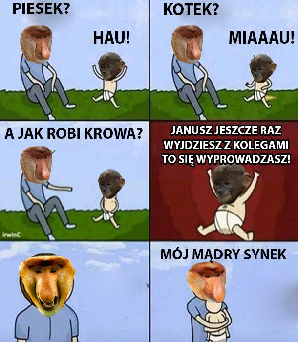 Mądry synek, Janusz aż pęka z dumy :D