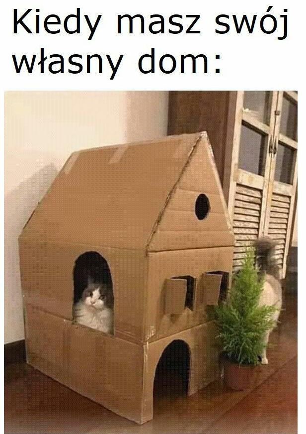 Dobrze mieć swój dom