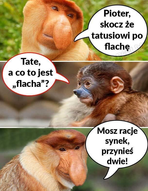 Flacha dla Janusza :D
