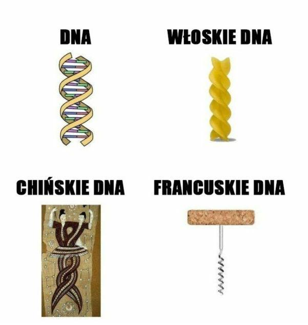Różne DNA