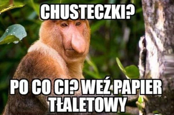 Wybory Janusza