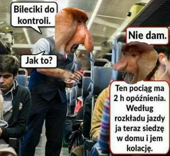 Janusz w pociągu