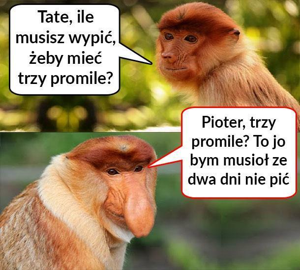 Janusz i trzy promile :D