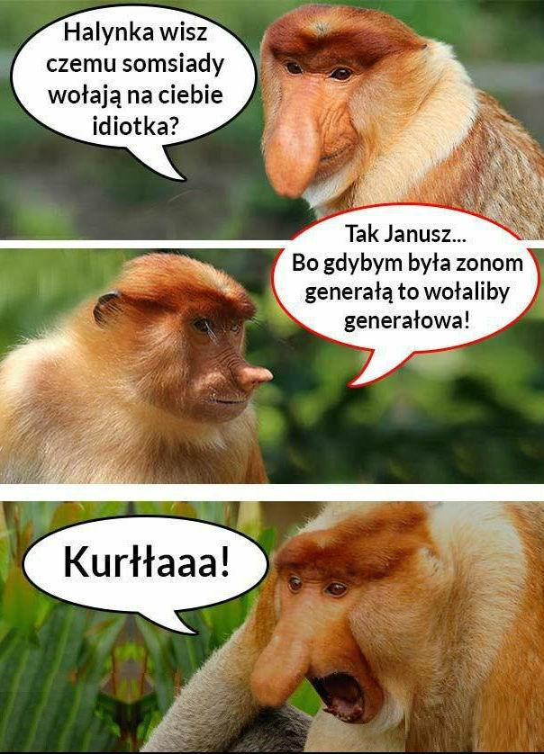 Rozmowa Janusza z żoną