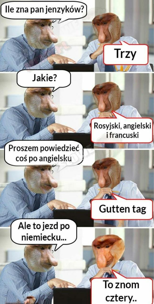 Janusz poliglota