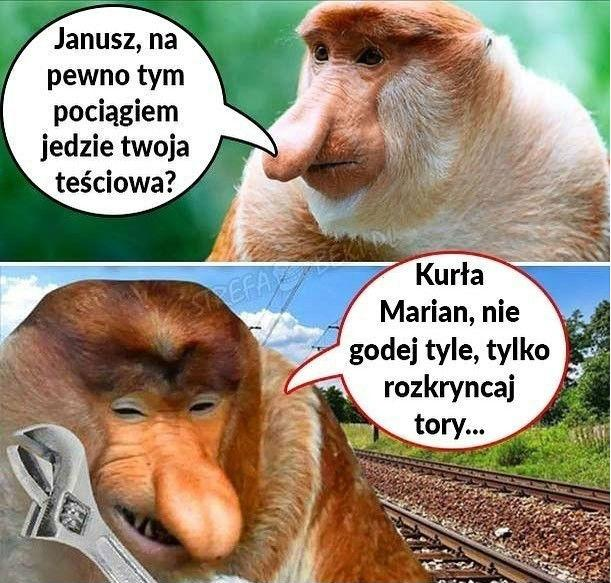 Intryga Janusza