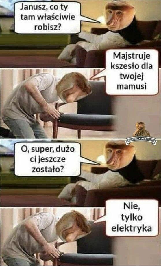 Janusz złota rączka