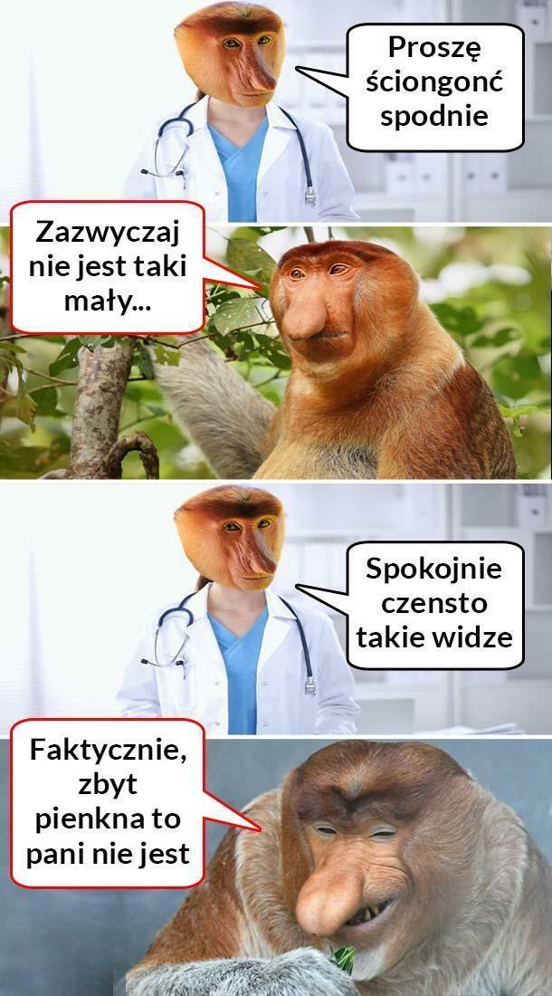 Janusz zaorał :D