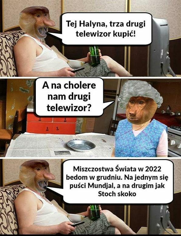 Janusz i jego plany