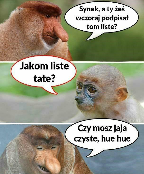 Rozmowa Janusza z synem
