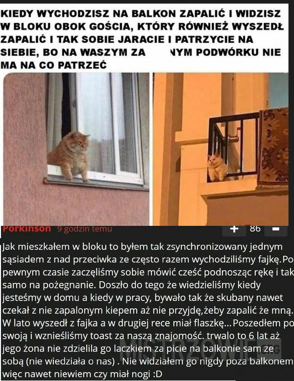 Szara polska rzeczywistość