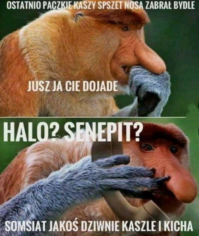 Janusz tego nie daruje :D