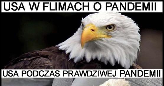 USA i pandemia :D