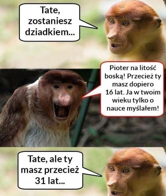 Gdy Janusz ma zostać dziadkiem :D