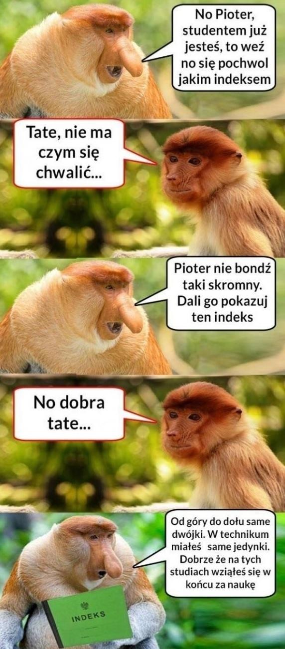 Indeks Pjotera :D