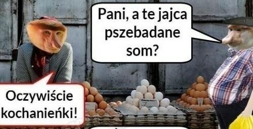 Janusz kupuje jajka :D
