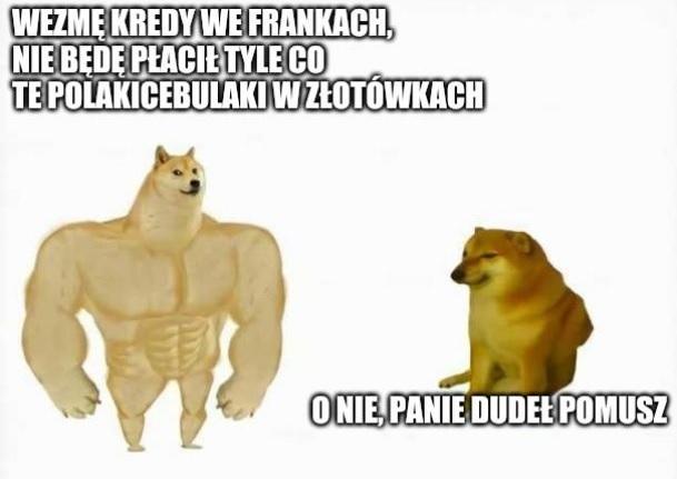 Frankowicze :D