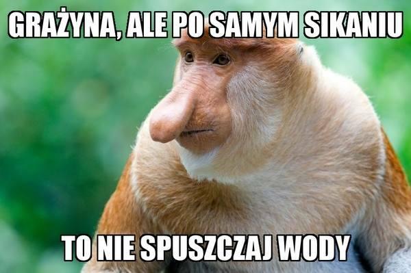 Janusz radzi :D