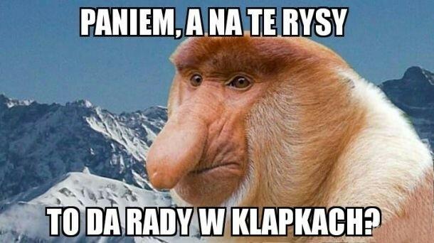 Janusz na Rysach :D