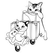 Kot podróżnik