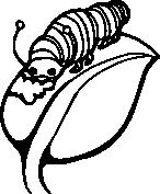 Gąsienica