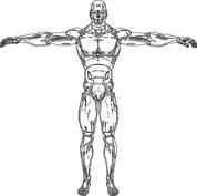 Człowiek - robot