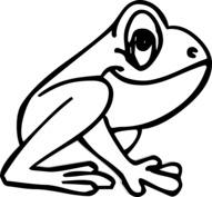 Duża żaba