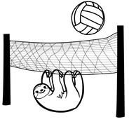 Siatkówka - leniwiec