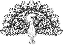 Pawi ogon