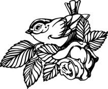 Ptaszek i róża