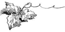 Samotny liść