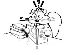 Wiewiórka z książkami