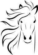 Grzywa konia