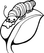 Gąsienica na liściu