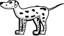 Dalmatyńczyk
