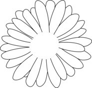 Słonecznik wzór