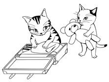 Pakowanie - koty