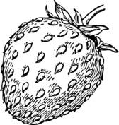 Ładna truskawka