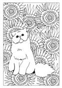 Artystyczny kot