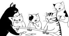 Koty w kasynie