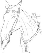 Głowa konia wzór